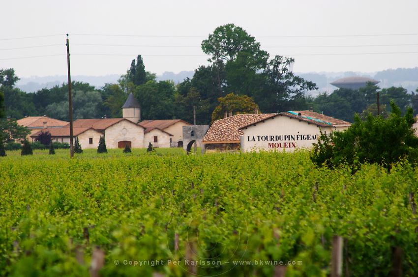 Chateau La Tour du Pin Figeac Moueix and vineyard Saint Emilion Bordeaux Gironde Aquitaine France