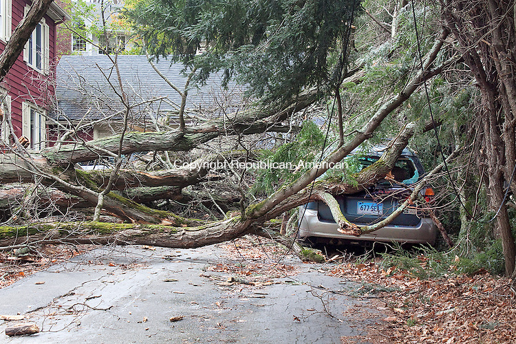 NAUGATUCK CT- OCTOBER 31 2011 -103112DA07-  A vehicle has extensive damage after a large maple tree fell onto it in Naugatuck during Hurricane Sandy. Along with the vehicle, 3 three other vehicles were damaged from the same tree..Republican-American