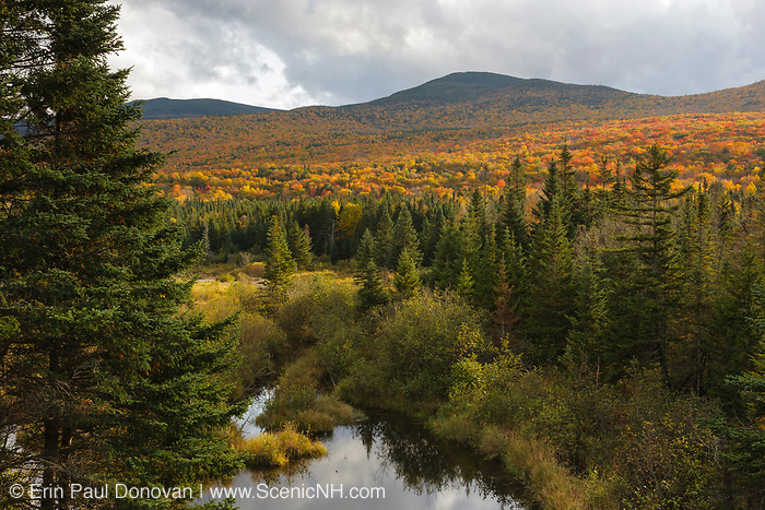 Autumn colors along Route 302 in Carroll, New Hampshire, part of the White Mountains.