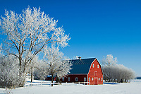 Hoarfrost and red barn<br />