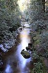 Creek at Big Basin State Park