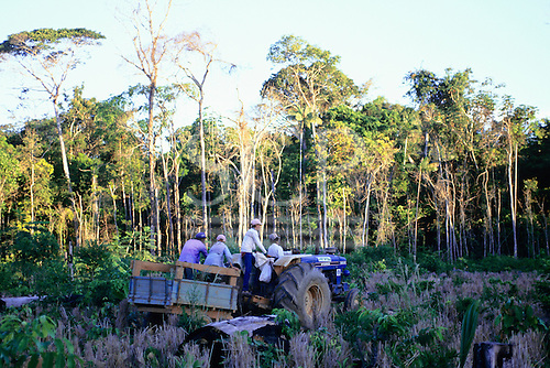 Juruena, Amazon, Brazil. Settlers on a field on a tractor; rainforest in the background.
