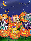 Janet, REALISTIC ANIMALS, Halloween, paintings, Cats on Pumpkins 2(USJS91,#A#)