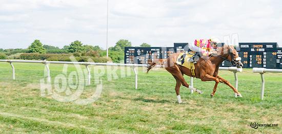 Abracadbra winning at Delaware Park on 9/5/15
