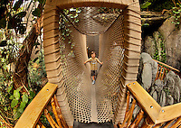 Visitors to Charlotte's Discovery Place museum check out World Alive, the museum's exhibit with an aquarium, a rainforest, a biodiversity gallery and two hands-on labs created to inspire inquiry-based  learning. Here, a child walks along the rope bridge in the rainforest exhibit. Discovery Place, Charlotte NC's interactive children's museum, unveiled its interactive exhibits and hands-on activities in June 2010. Renovations of the popular family museum were made possible by the City of Charlotte, the Arts and Science Council and private donations. Discovery Place museum has age-appropriate exhibits for kids of all ages.