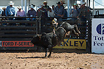 126 Ralph of Arianna Floyd/ Boyd-Floyd during the American Bucking Bull, Incorporated event in Decatur, TX - 6.3.2016. Photo by Christopher Thompson