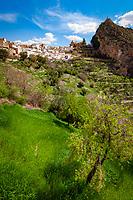 Spanien, Andalusien, Provinz Jaén, Castril: weisses Dorf   Spain, Andalusia, Province Jaén, Castril: pueblo blanco
