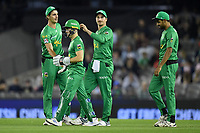 10th January 2020; Marvel Stadium, Melbourne, Victoria, Australia; Big Bash League Cricket, Melbourne Renegades versus Melbourne Stars; Melbourne Stars players celebrate a wicket - Editorial Use