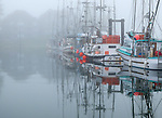 Ucluelet Harbor, British Columbia: Boats in the Small Boat Basin in fog. Vancouver Island, Canada