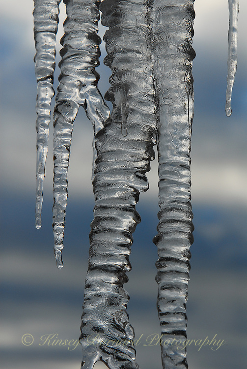 &quot;ICICLES-1&quot;<br />