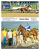 Indian Red winning at Delaware Park on 9/28/15