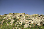 Israel, Lower Galilee, Hurvat Cana site of Ancient Cana, archaeological remains from the Roman and Byzantine periods