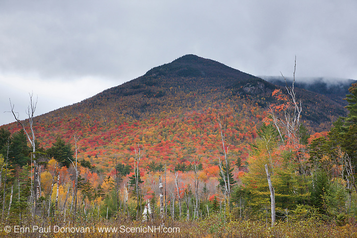 The southern end of Owls Head from a wetlands area along the Franconia Brook Trail during the autumn months in the Pemigewasset Wilderness of New Hampshire. A spur line of the old East Branch & Lincoln Logging Railroad (1893-1948) traveled through the foreground.