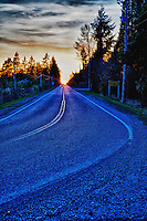 Curve in a Country Road Langley B.C.