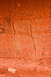 These pictographs in Black Dragon Canyon on the edge of the San Rafael Swell in Utah were painted by the Archaic Culture Native Americans between 1,500 and 4,000 years ago.  The pictographs were outlined with chalk in the 1940's, irreparably damaging them.