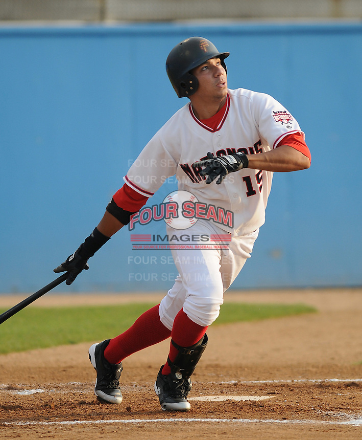 June 21, 2008: Outfielder Francisco Plasencia (15) of the Potomac Nationals, Carolina League affiliate of the Washington Nationals, in a game against the Frederick Keys at G. Richard Pfitzner Stadium in Woodbridge, Va. Photo by:  Tom Priddy/Four Seam Images