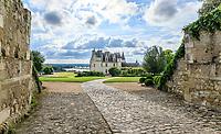 France, Indre-et-Loire (37), Amboise, château d'Amboise, vue depuis la porte des Lions