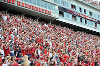 STAFF PHOTO ANTHONY REYES &bull; @NWATONYR<br /> Fan cheers as the Razorbacks score a touchdown against Nicholls State in the first quarter Saturday, Sept. 6, 2014 at Razorback Stadium in Fayetteville.