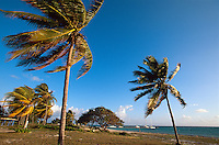 Cuba, Playa Santa Lucia, Provinz Camagüey