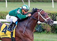 08-06-17 Saratoga Non-graded Stakes
