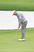 Hennie Otto (RSA) putts on the 13th green during Sunday's Final Round of the 2014 BMW Masters held at Lake Malaren, Shanghai, China. 2nd November 2014.<br /> Picture: Eoin Clarke www.golffile.ie