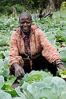 ANGOLA Malanje , Foerderung von Kleinbauern, Gemueseanbau, Farmer mit machete im Feld mit Kohl / ANGOLA Malanje , support of small scale farmers , cultivation of vegetables like cabbage for additional income generation