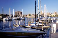 Buffalo, New York, NY, Downtown skyline of Buffalo from Erie Basin Marina on Lake Erie.