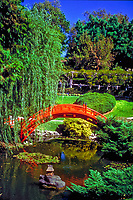 Huntington Gardens,  Botanical Gardens , Pasadena, CA, Architectural,  Curved Red, Wooden Bridge, Japanese Garden ,Water