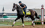LOUISVILLE, KENTUCKY - MAY 02: Cutting Humor, trained by Todd Pletcher, exercises in preparation for the Kentucky Derby at Churchill Downs in Louisville, Kentucky on May 2, 2019. Scott Serio/Eclipse Sportswire/CSM