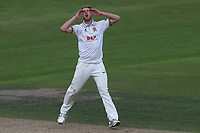 Frustration for Jamie Porter of Essex during Nottinghamshire CCC vs Essex CCC, Specsavers County Championship Division 1 Cricket at Trent Bridge on 12th September 2018