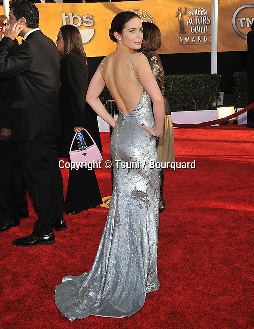 Emily Blunt _ - <br /> Sag - Screen Actor Guild Awards 2009  at the Shrine Auditorium in Los Angeles
