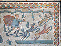 Close up detail picture of the Roman mosaics of the small hunt depicting dogs chasing a fox, room no 24 at the Villa Romana del Casale, first quarter of the 4th century AD. Sicily, Italy. A UNESCO World Heritage Site.<br /> <br /> The Small Hunt room was used as a living room for guests of the Villa Romana del Casale. The Small hunt mosaic design has 4 registers running across the mosaic depicting hunting scenes. In the first register two servants are handling hunting dogs. In the second register figures are depicted burning incense at an altar to Diana, the goddess of hunting, before the hunt starts. The offering is being made by Constantius Clorus , the Caesar of Emperor Maximianus who owned the Villa Romana del Casale. Behind him is his son the future Emperor Constantine. To the right of the altar is a figure holding the reins of a horse dressed in a clavi decorated with ivy leaves indicating that he belongs to the family of Maximianus.