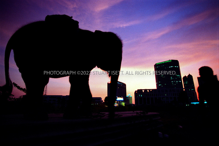 3/15/2000--Bangkok, Thailand..As the sun sets, Ploy heads out into the city to start a night's work...Photograph by Stuart Isett.©2003 Stuart Isett All rights reserved