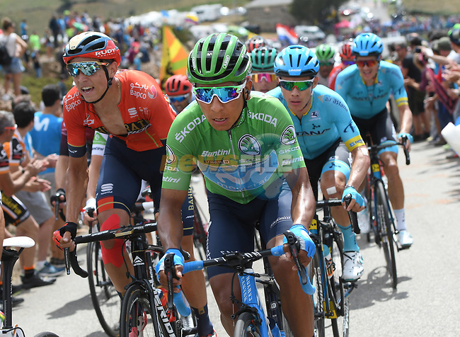 Nairo Quintana (COL) Movistar Team wearing the Green Jersey, Dylan Teuns (BEL) Bahrain-Merida and Miguel Angel Lopez Moreno (COL) Astana Pro Team in the main bunch during Stage 15 of La Vuelta 2019  running 154.4km from Tineo to Santuario del Acebo, Spain. 8th September 2019.<br /> Picture: Karlis | Cyclefile<br /> <br /> All photos usage must carry mandatory copyright credit (© Cyclefile | Karlis/Photogomezsport)