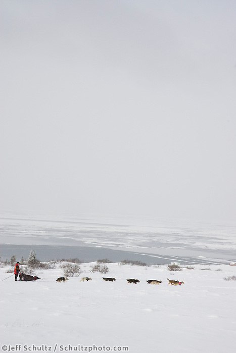 Aliy Zirkle runs on the trail with the Bering Sea in the background six miles after Unalakleet on Monday during Iditarod 2008