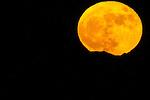 11-14-2016 Super Moon over Las Vegas