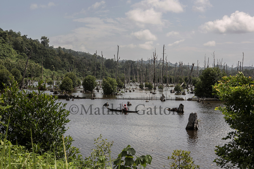 Indonesia - Sumatra - Aceh - Outskirts of Rigaih - A fisherman sails in the fish ponds amidst the dead trees left by the tsunami. The power of the waves had carried the water more than 7km inland washing most of the nature away, very few trees had survived.