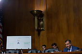 United States Senator Ted Cruz (Republican of Texas) refers to a graphic during the testimony of Karan Bhatia, Vice President for Government Affairs and Public Policy at Google, before the Subcommittee on the Constitution on Capitol Hill in Washington D.C., U.S. on July 16, 2019.<br /> <br /> Credit: Stefani Reynolds / CNP