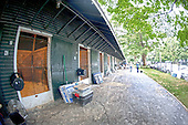 2013 Fasig Tipton Sales - archival evergreens