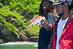Charlotteville fishing at St Giles Island,red fish that has sharp spines, Tobago