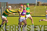Kerry's Shane Brick and Wexford's David Redmond..
