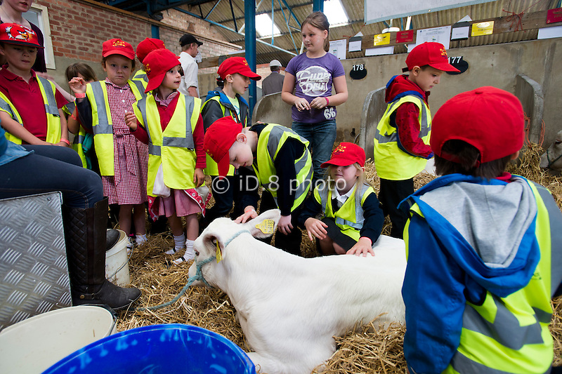 Children from Redhill Infants School Castleford