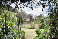 The gardens around the Ngong House, a luxury boutique style guesthouse.