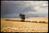 Train with central pusher hauling stock cars and pipe gondolas.<br /> D&amp;RGW  San Luis Valley, CO