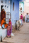 People and a cow hanging out in a narrow street, Bundi, India