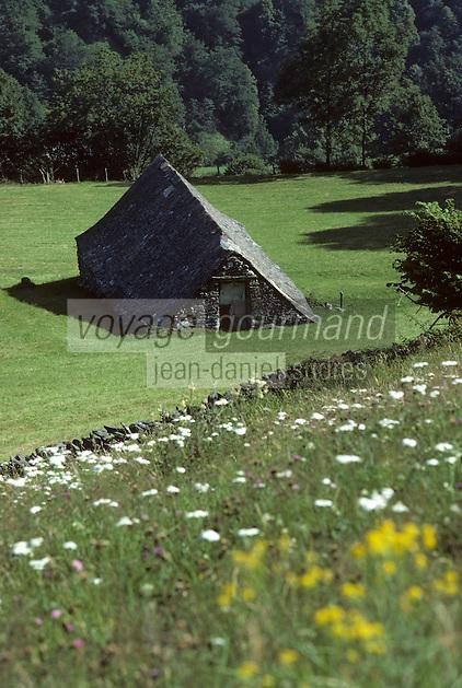 Europe/France/Aquitaine/64/Pyrénées-Atlantiques/Parc National des Pyrénées/Borde: Montagne de Béost et habitat