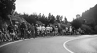 Milan-San Remo 2012.raceday.fans up Capo Berta.