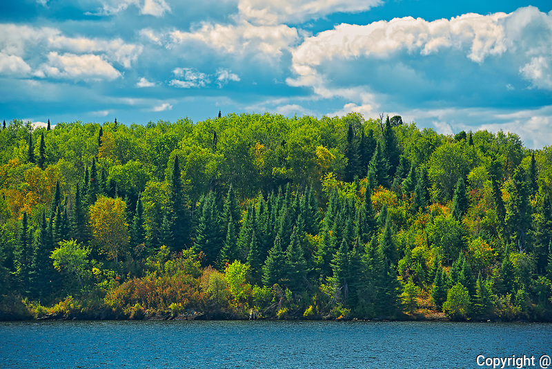 Shoreline of Lake of The Woods<br />