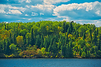 Shoreline of Lake of The Woods<br />Kenora District<br />Ontario<br />Canada