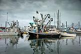 USA, Alaska, Homer, China Poot Bay, Kachemak Bay, boats moored in the marina off Homer Spit